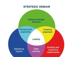 Scheme of strategic domains, operational domain and interpersonal domain